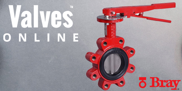 Focus On Bray Butterfly Valves