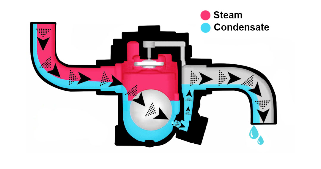 steam trap